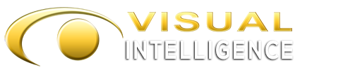 Visual Intelligence Inc