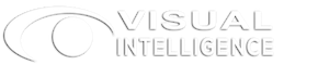Visual Intelligence Inc